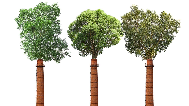 alcantara-sostenibilita-alberi-carbon-neutrality-3 - alcantara-sostenibilita-alberi-carbon-neutrality-3